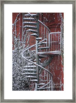 Spiral Staircase With Snow And Cooper's Hawk Framed Print