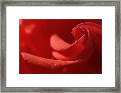 Framed Print featuring the photograph Spiral's Heart by Raffaella Lunelli