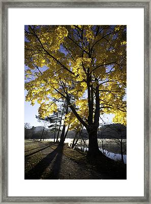 Spirit By The Lake Framed Print by Rob Travis