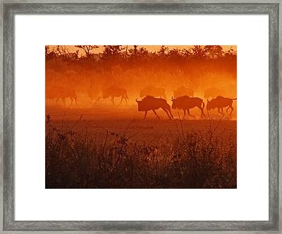 Framed Print featuring the photograph Spirit Dance by William Fields