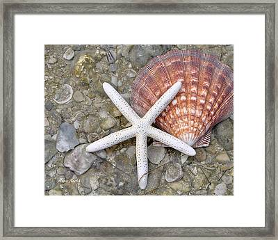 Spirit Of The Seashore  Framed Print