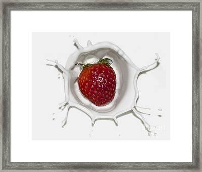 Splash Of Strawberry Framed Print by Jane Brack