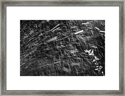 Splash Framed Print by Victor Bezrukov