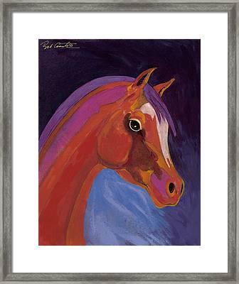Splendor Framed Print by Bob Coonts