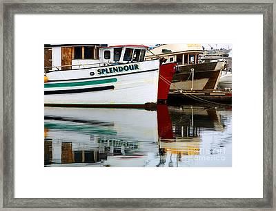 Splendour Framed Print by Bob Christopher