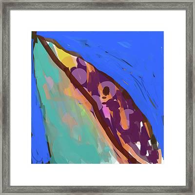 Splotchy Dolphin Greets The Day Framed Print