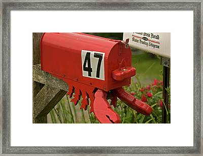 Sponge Bob's Mail Box  Framed Print by Paul Mangold
