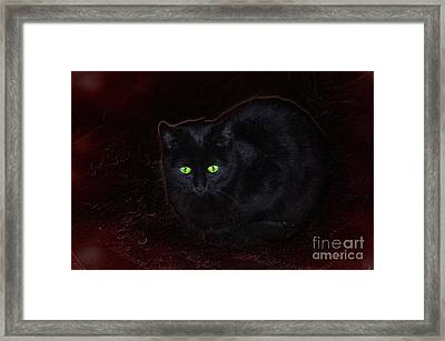 Spooky Framed Print by The Stone Age