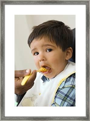 Spoon-feeding Framed Print by Ian Boddy