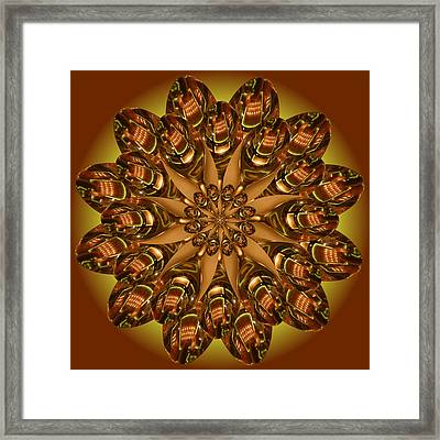Spoons Framed Print by Linda Pope