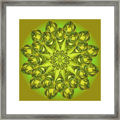 Spoonz Framed Print by Linda Pope