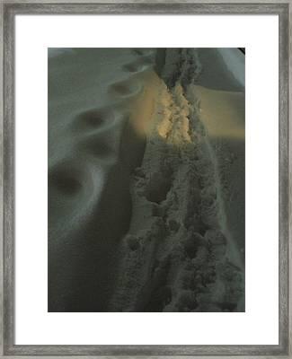 Spotlight On Snow Steps Framed Print by Guy Ricketts
