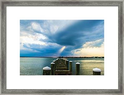 Spotlight Framed Print by Shannon Harrington
