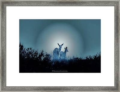 Spotted Framed Print by Sarai Rachel