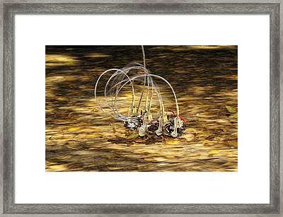 Sprawlita Cockroach Robot Framed Print by Volker Steger