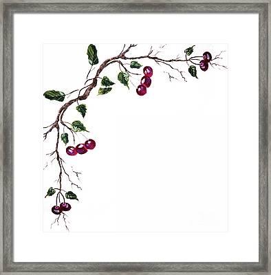 Spray Of Cherries Framed Print