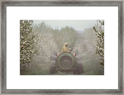 Spraying Apple Trees From A Machine Framed Print by Sisse Brimberg
