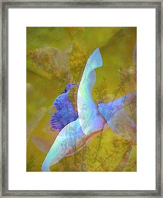 Spread To The Wind Framed Print