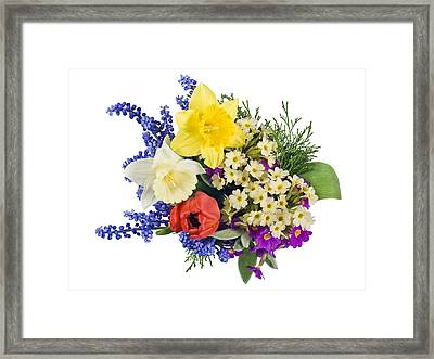 Framed Print featuring the photograph Sprig Mix Background by Aleksandr Volkov