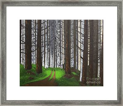 Spring After The Fire Framed Print
