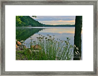 Framed Print featuring the photograph Spring At The Lake by Joan McArthur