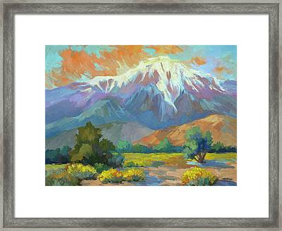 Spring At Whitewater Preserve Framed Print by Diane McClary
