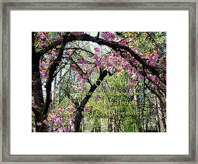 Spring Blossoms With Scripture Framed Print by Cindy Wright