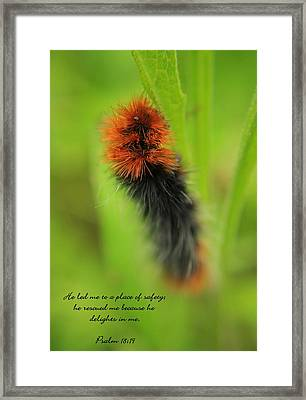Spring Caterpillar Framed Print by Tyra  OBryant