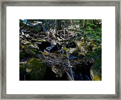 Spring Cleaning 6 Framed Print