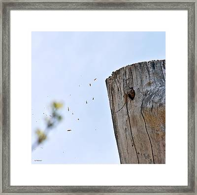 Framed Print featuring the photograph Spring Cleaning by Edward Peterson