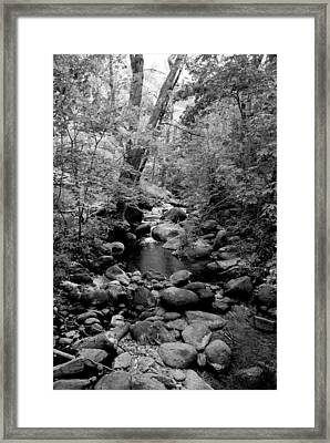 Spring Creek Framed Print