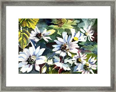 Spring Daisies Framed Print by Mindy Newman