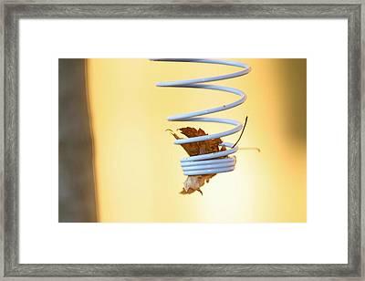 Spring Framed Print by Debbie Sikes