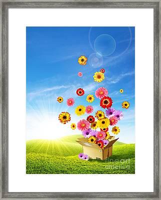 Spring Delivery 2 Framed Print