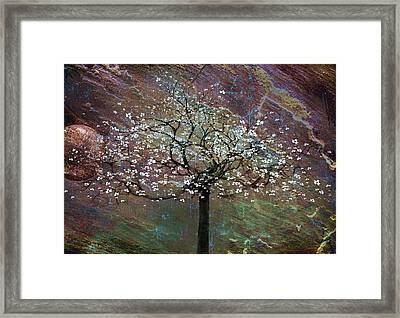 Spring Dreaming Framed Print by Gray  Artus