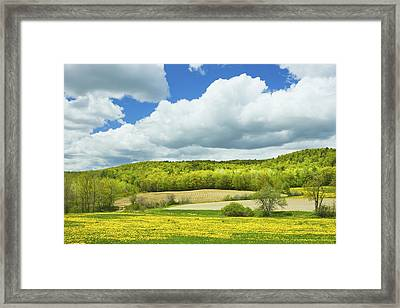Spring Farm Landscape And Blue Sky In Maine Framed Print