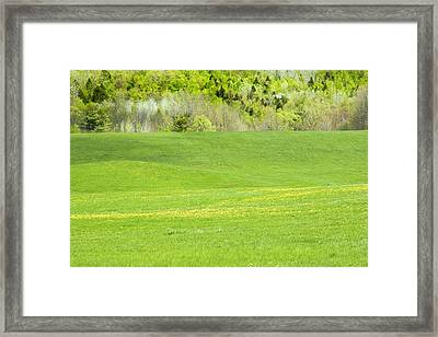 Spring Farm Landscape In Maine Framed Print