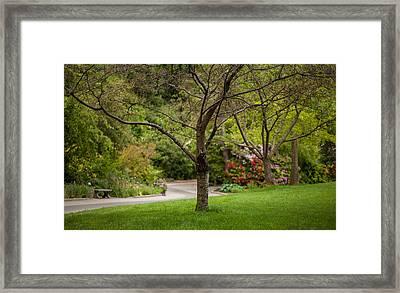 Spring Garden Landscape Framed Print by Mike Reid