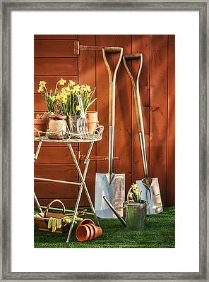 Spring Gardening Framed Print by Amanda Elwell