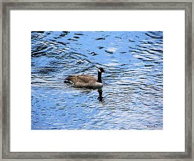 Spring Goose Framed Print