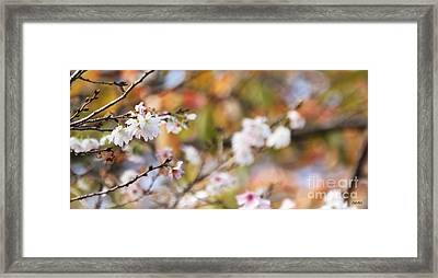 Spring In Autumn Framed Print by Eena Bo