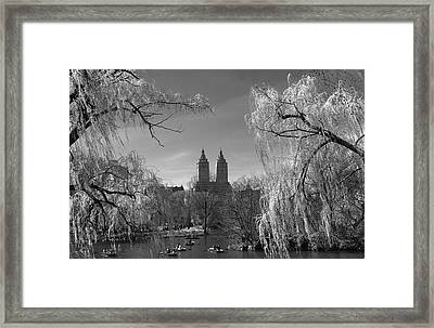 Spring In Central Park Framed Print