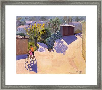 Spring In Cyprus Framed Print by Andrew Macara