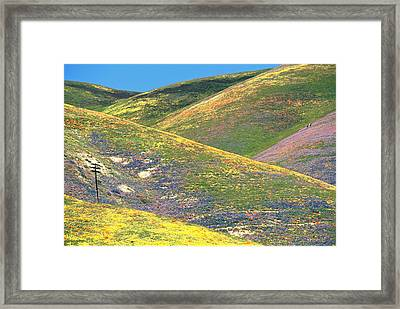 Spring In The Gorman Hills Framed Print
