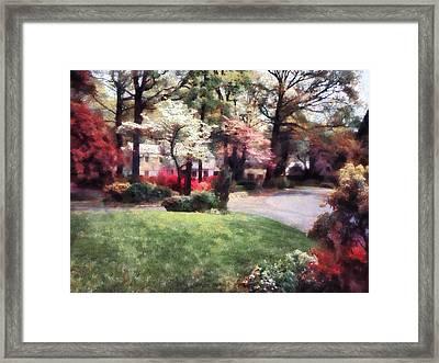 Spring In The Neighborhood Framed Print