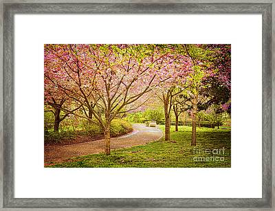 Framed Print featuring the photograph Spring In The Park by Cheryl Davis