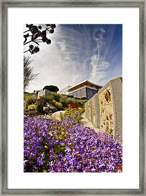 Spring Is Here Framed Print by Tony Locke