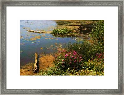 Spring Lake Millpointe Park Framed Print by Ritter Photography And Fine Art Images