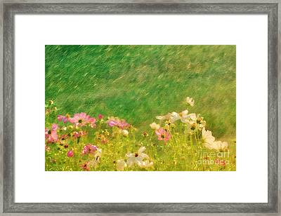 Spring Rain Framed Print by Darren Fisher