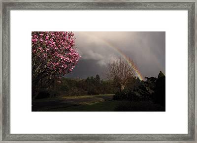 Spring Rainbow Framed Print